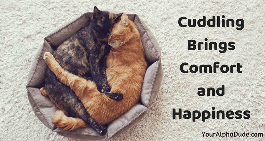 Cute ways to cuddle