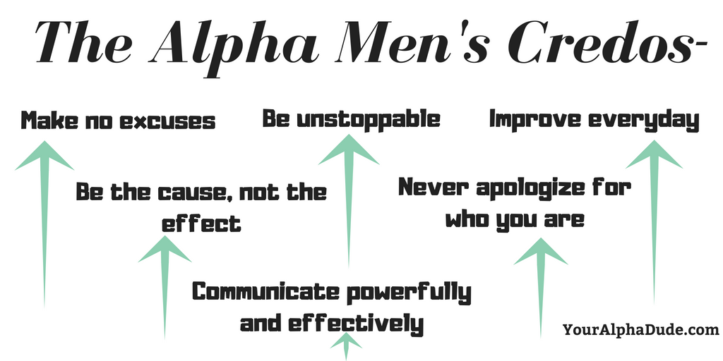 who is an alpha male